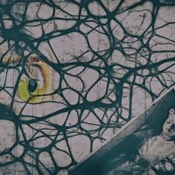 Il Montaggio Video: come si costruisce una storia nella mente dello Spettatore